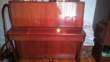 17 elan | İDMAN VƏ HOBBI: Piano və fortepianolar