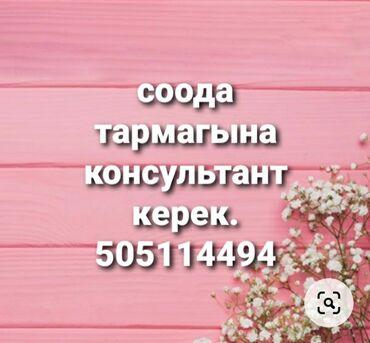 Аквариумы - Кыргызстан: Орусча кыргызча эркин суйлогон консультант керек.Иш