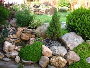 Альпийские горки, газон, посадка деревьев, ландшафтный дизайн, полив с