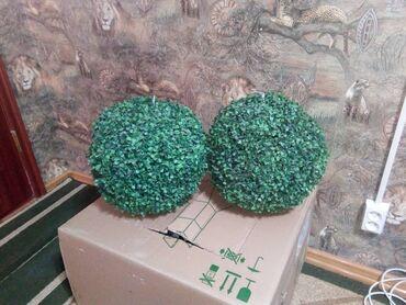 полочка для лаков в Кыргызстан: Продаю стелажи (плолки навесные) -2 штВетринная полка-1штШарики