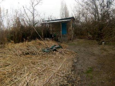 Недвижимость в Саатлы: Продажа Дома от собственника: 360 кв. м, 1 комната