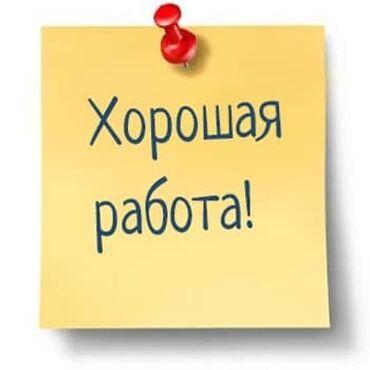 требуется реализатор в Кыргызстан: Требуется реализатор мыло мойки, от 18 до 50 лет желательно с опытом