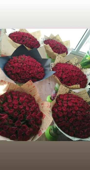 Убийственные цены на количество роз 101 в Бишкек