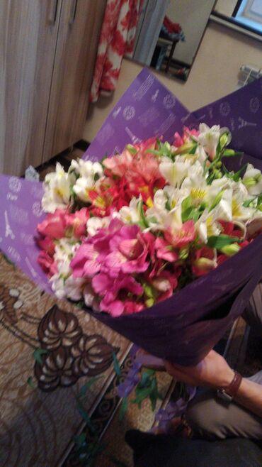 Акция на все цветы Букеты Розы от 30 см до 1 метраАльстермерия разные