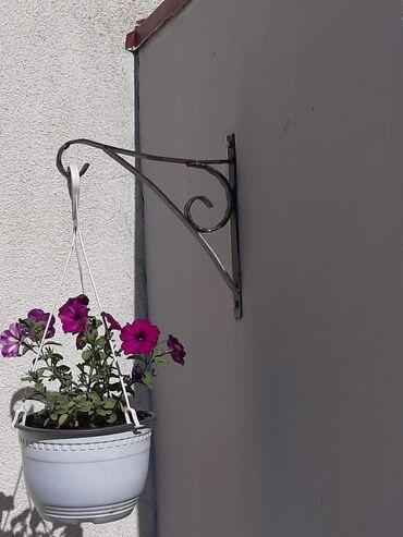 | Zabalj: Drzaci za saksije i cvece