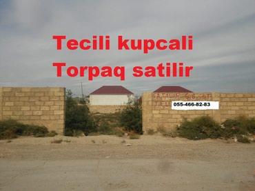 Bakı şəhərində Tecili kupcali 6.6 sot torpaq satilir