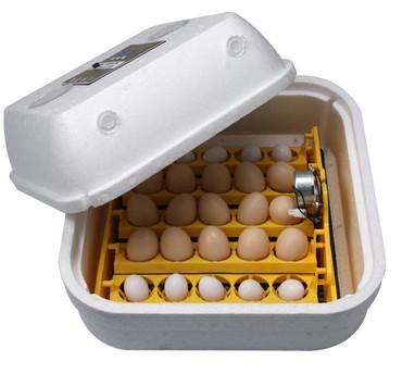 упаковки для яиц в Кыргызстан: Инкубатор на 36 яиц Материал пенопласт, Тип автономный / ручной,Led