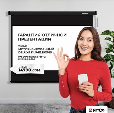 скрытый диктофон бишкек in Кыргызстан   IPOD И MP3-ПЛЕЕРЫ: Экран для проекторв Deluxe, моторизированный DLS-E229-185  В экране дл