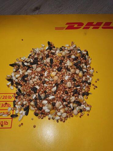 Зерносмесь для голубей! Состав, кукуруза, семечки, горох, просо