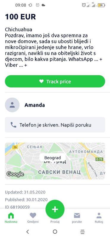 AMANADA WYDRA PREVARA