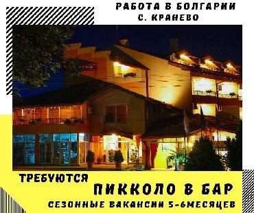 Работа пикколо в бар в болгариис. Кранево сезонные вакансии 5-6