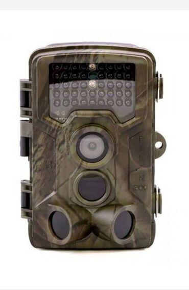 Охота и рыбалка - Кыргызстан: Фотоловушка филин 200-камера для охоты/для охраны