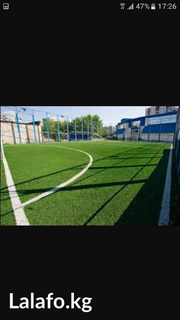 шкуры для дома в Кыргызстан: Газон, газон в Бишкеке,Искусственный газон для мини футбольного поля