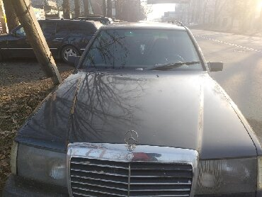 Mercedes-Benz 230 2.3 л. 1989 | 37436 км
