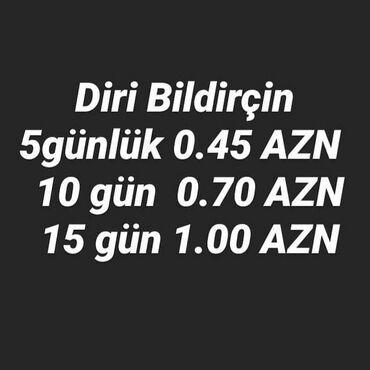 - Azərbaycan: Bildircin ati  Bildircin jumurtasi Bildircin balasi