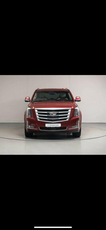 аромат для настоящих мужчин в Кыргызстан: Cadillac Escalade 5.5 л. 2020   999 км