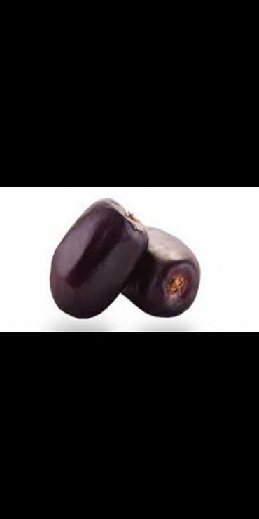 ствол грецкого ореха в Кыргызстан: Финики оптом. большой 130с (800)+-50 грм . маленький 110с (600)-+50