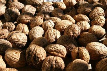 куплю орехи в Кара-Балта