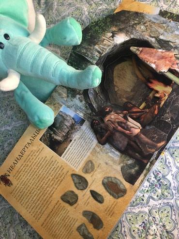 Интереснейшая книга о ЛЕДНИКОМ ПЕРИОДЕ  Хочешь посмотреть на мамонта? в Бишкек - фото 2