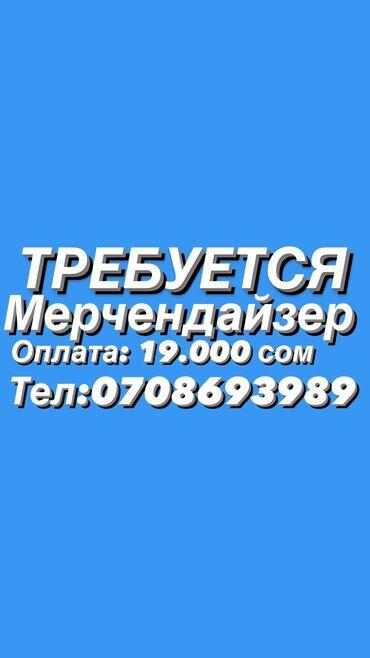 Поиск сотрудников (вакансии) - Бишкек: Мерчендайзер. С опытом. Неполный рабочий день