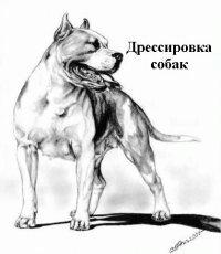 дрессировка собак, любой породы.г Оше общий курс дрессировки по времен в Ош