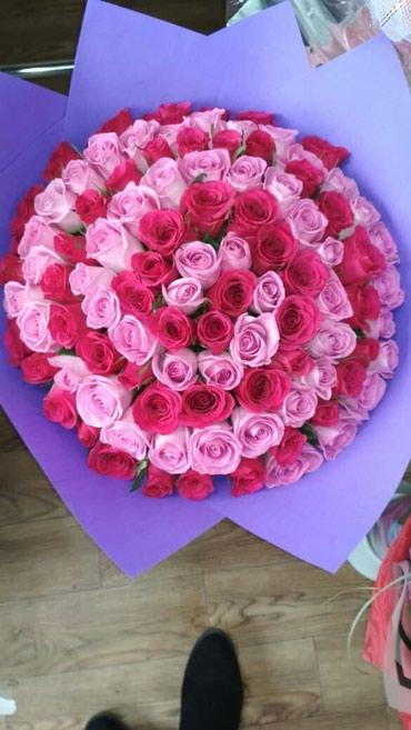Розы розы розы !!!101роза -3000сом в Бишкек