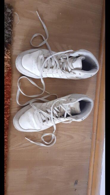 Adidas zenske - Srbija: Zenske adidas patike