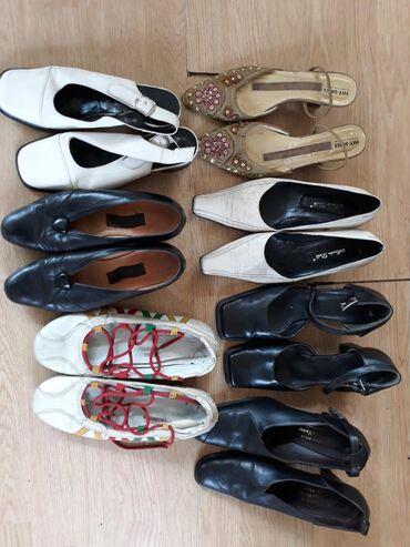 Cipele 38 vel.AKCIJA