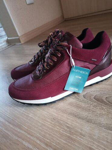 Кроссовки и спортивная обувь в Кыргызстан: Продаю абсолютно новые женские кроссовки (оригинал) Geox . Качество