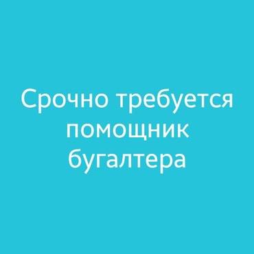 Срочно требуется помощник бугалтера. в Бишкек