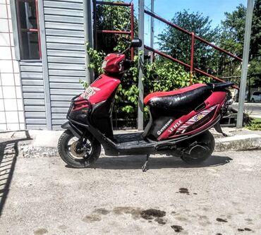 продам теленка в Кыргызстан: Продам скутер 50куб