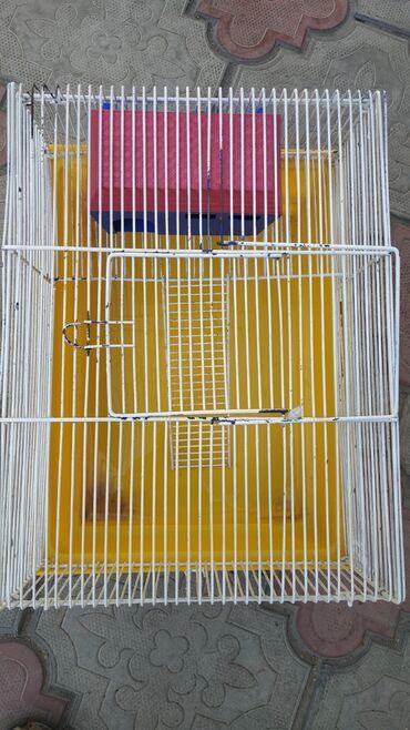 Продаю двухэтажную клетку с домиком, колесом и поилкой для хомяков 800