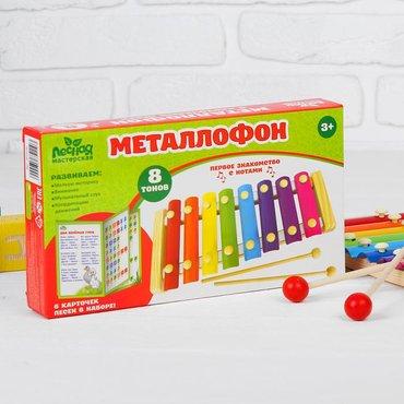 Металлофон, 12 тонов + карточки с песнями, купить Металлофон, 12 тонов