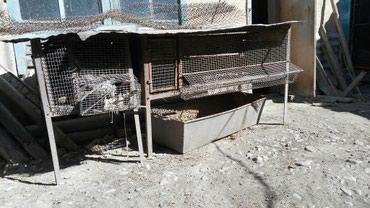 Продаю железные клетки для кроликов в Бишкек