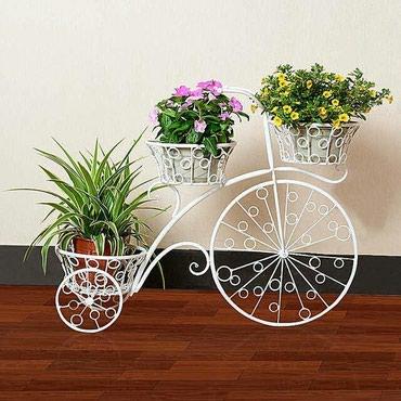 Lənkəran şəhərində Fotosessiya ve bag evleri ucun dekorativ velosiped,,,lenkeranda