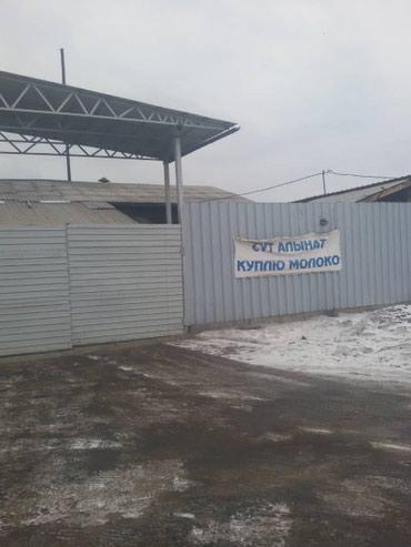 ПРОДАЮ Действующий Бизнес. в Ананьево