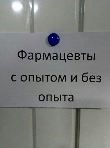 С открытием новой аптеки сеть аптеки Ал-Хаким приглашает сотрудников н в Бишкек