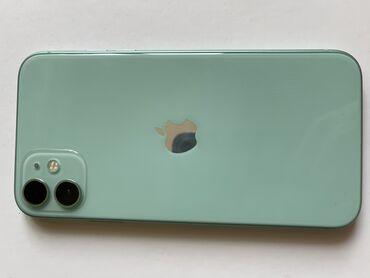 Туй голубые ели - Кыргызстан: Б/У IPhone 11 64 ГБ Голубой