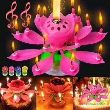 SAMO 950/komLotos Flower CandleOno što sledi će Vas oduševiti! Nakon