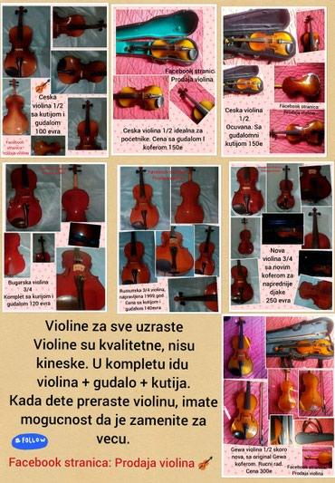 Violine za sve uzraste - Beograd