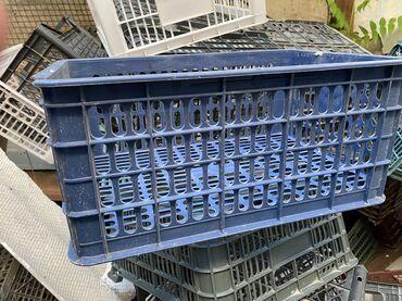 железные-ящики в Кыргызстан: Ящики пластмассовые 40*25