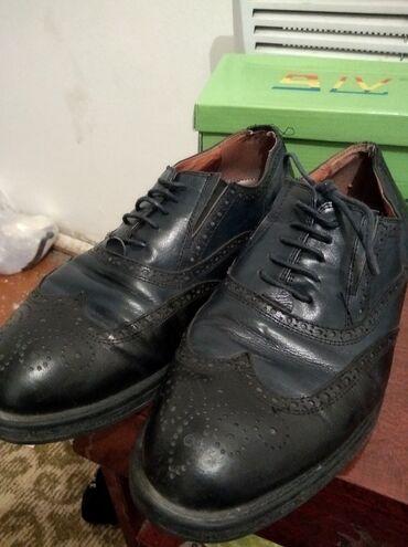 12 объявлений | ОТДАМ ДАРОМ: Кожаные туфли от Rossini Robertoотдам за 5 литр подсолнечного масло ав