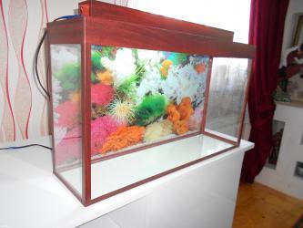 Bakı şəhərində Wekildeki teze akvarium uzunu 70 sm  hundurluyu 45sm  eni 20 sm