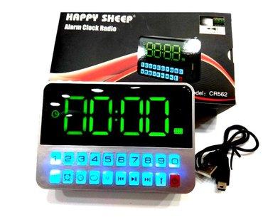 RADIO SAT - ZELENO OSVETLJENJE.  Radio sat Happy Sheep model CR562 je - Nis