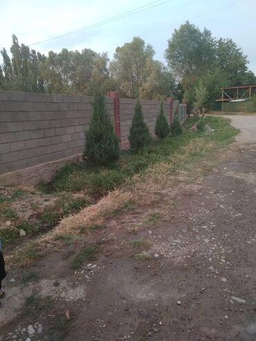 Недвижимость - Узген: 22 кв. м 3 комнаты, Бронированные двери, Евроремонт