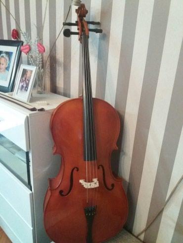 Violončelo 3/4, marke Miler u odličnom stanju.Za nizu muzički - Nis