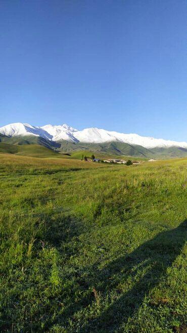 Торговая недвижимость - Кыргызстан: Хорошее вложение, когда границы закрыты, торговля падает, но идет рост