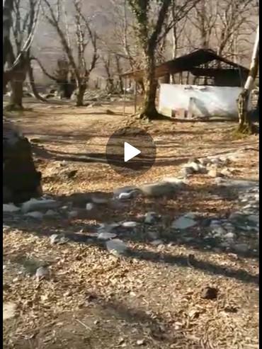 xal xal paltarlar - Azərbaycan: Satış 10000 sot İnşaat