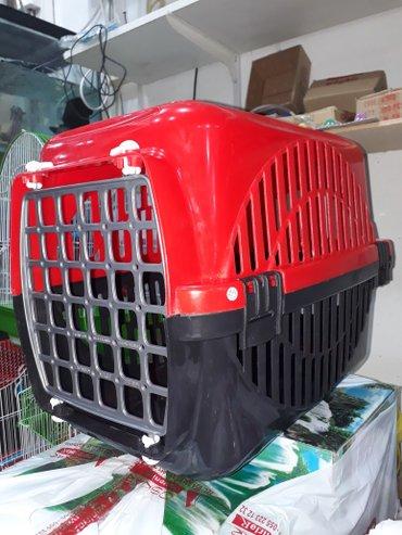 Bakı şəhərində Itler ve pisiklercun dasiyici konteyner tezedir ve Turkiye istehsalidi