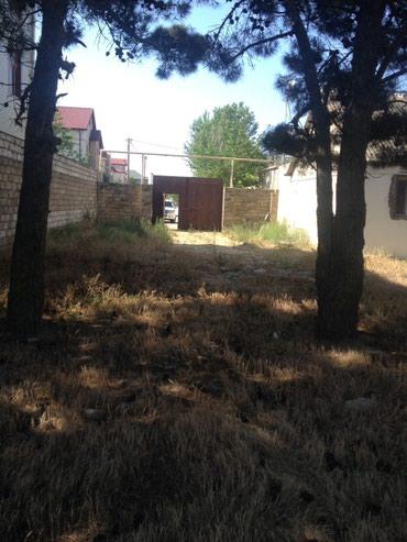 Bakı şəhərində Buzovnada Albali Marketin yaxinliginda 27 sot Torpaq Sahesi Tecili